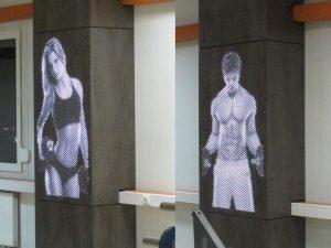 Декоративные панели в спортзале